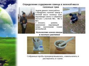 Определение содержание свинца в зеленой массе газонных трав Количество ионов