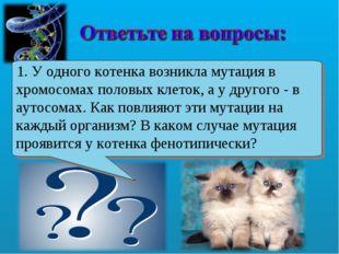 1. У одного котенка возникла мутация в хромосомах половых клеток, а у другого