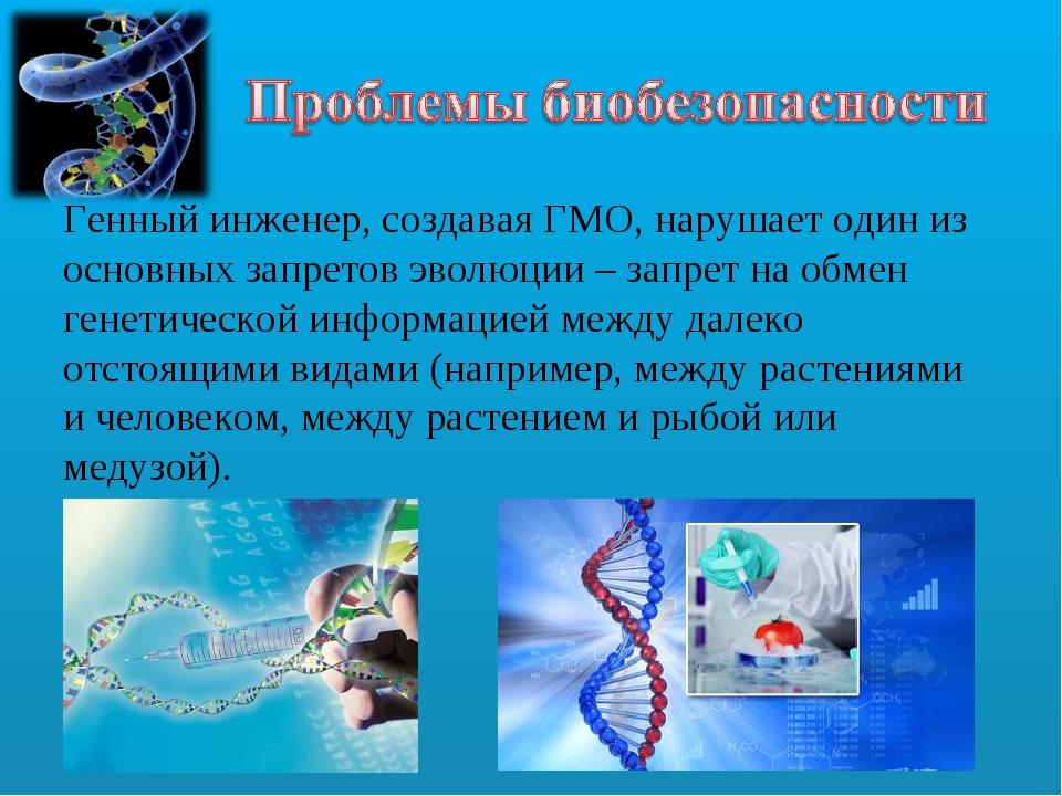 Генный инженер, создавая ГМО, нарушает один из основных запретов эволюции – з...