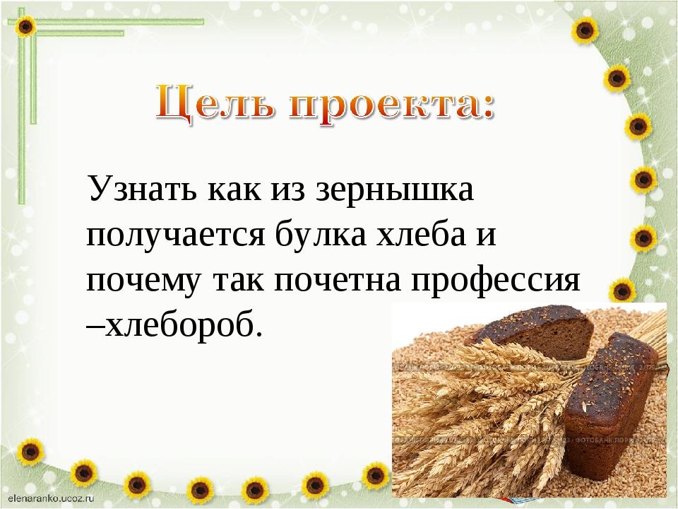 Узнать как из зернышка получается булка хлеба и почему так почетна профессия...