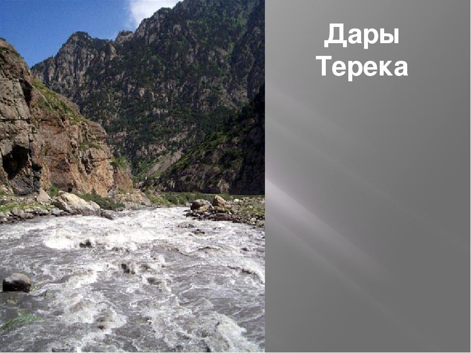 Дары Терека