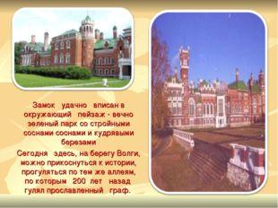 Замок удачно вписан в окружающий пейзаж - вечно зеленый парк со стройными со