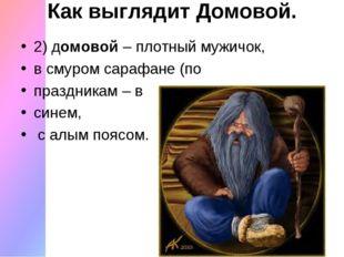 Как выглядит Домовой. 2) домовой– плотный мужичок, в смуром сарафане (по пра