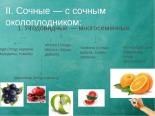 II. Сочные — с сочным околоплодником: 1. Ягодовидные— многосеменные: ягода (
