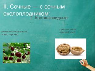 II. Сочные — с сочным околоплодником: 2. Костянковидные: сочная костянка (виш