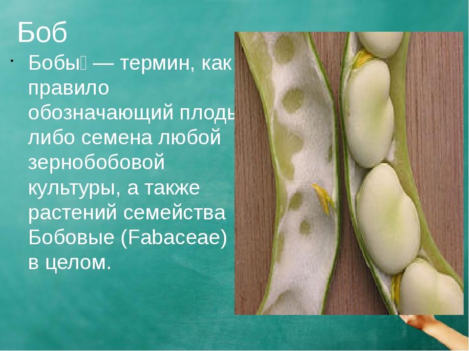 Боб Бобы́ — термин, как правило обозначающий плоды либо семена любой зернобоб...