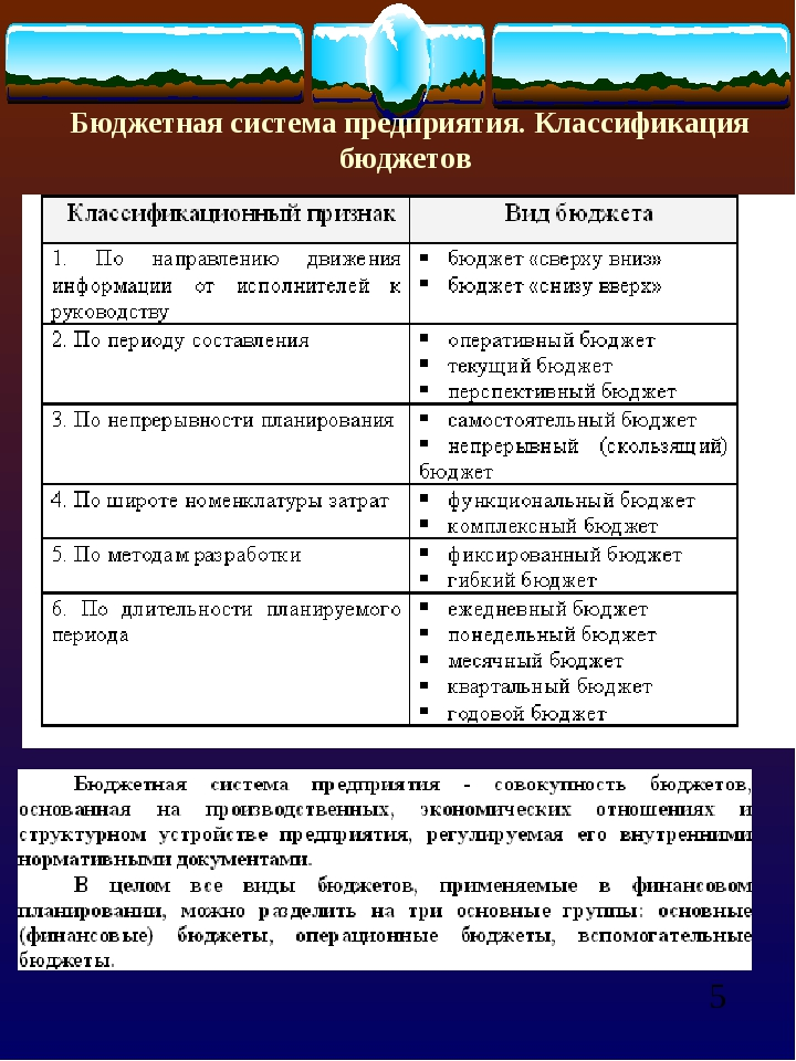 Бюджетная система предприятия. Классификация бюджетов