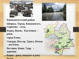 Княжпогостский район Шошка, Туръя, Княжпогост, Серёгово – сёла, Кедва, Вымь,