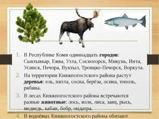 В Республике Коми одиннадцать городов: Сыктывкар, Емва, Ухта, Сосногорск, Ми