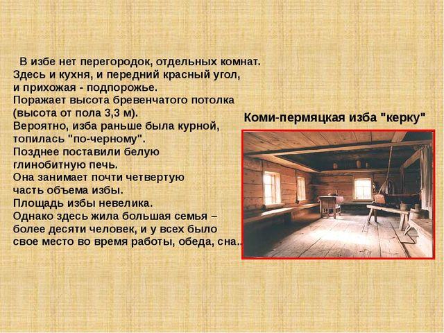 В избе нет перегородок, отдельных комнат. Здесь и кухня, и передний красный...
