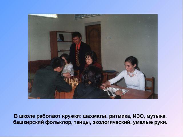 В школе работают кружки: шахматы, ритмика, ИЗО, музыка, башкирский фольклор,...