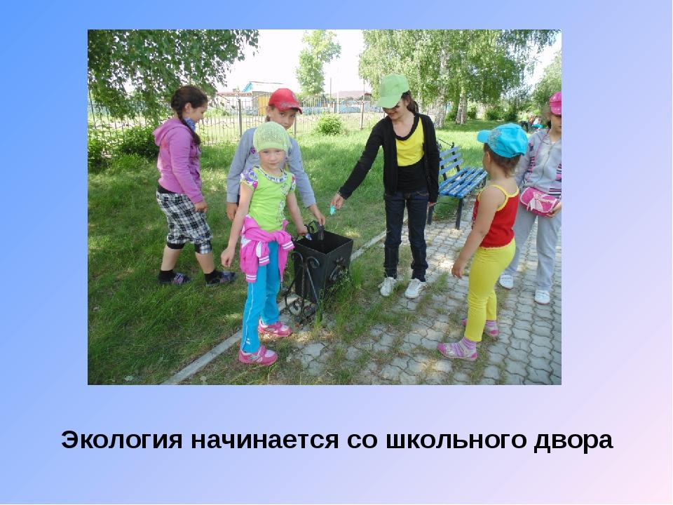Экология начинается со школьного двора
