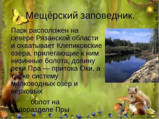 Мещёрский заповедник. Парк расположен на севере Рязанской области и охватывае...