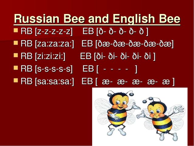 Russian Bee and English Bee RB [z-z-z-z-z] EB [ð- ð- ð- ð- ð ] RB [za:za:za:]...