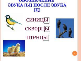 ОБОЗНАЧЕНИЕ ЗВУКА [Ы] ПОСЛЕ ЗВУКА [Ц] синицы скворцы птенцы *