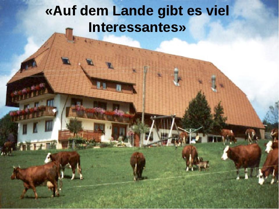 «Auf dem Lande gibt es viel Interessantes»