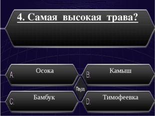 5.Кто впервые завез картофель в Россию из Европы ? Николай II Иван Грозный Ек