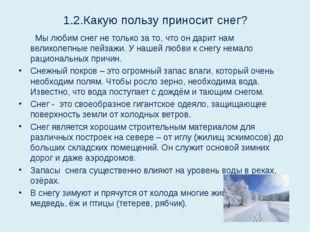 1.2.Какую пользу приносит снег? Мы любим снег не только за то, что он дарит н