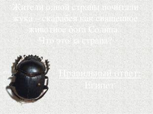 Жители одной страны почитали жука – скарабея как священное животное бога Солн