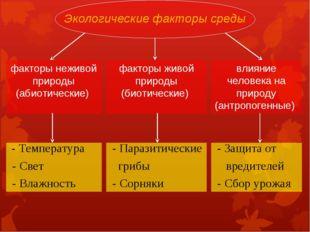 Экологические факторы среды факторы неживой природы (абиотические) факторы жи