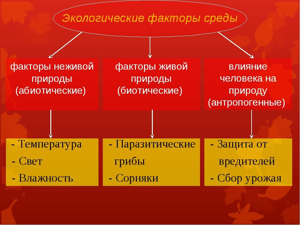 Экологические факторы среды факторы неживой природы (абиотические) факторы жи...