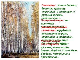 Эпитеты: милое дерево, девичью красоту, стройную и статную, с русыми косами,