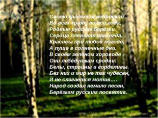 Своею красотой неброской Во всех краях, во все года, Родные русские берёзки С