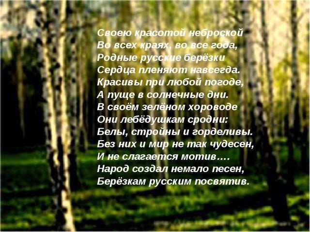 Своею красотой неброской Во всех краях, во все года, Родные русские берёзки С...