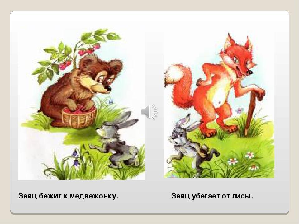 Заяц бежит к медвежонку. Заяц убегает от лисы.