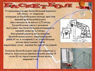 Устанавливается щит баскетбольный навысоте 3,05 метра - от покрытия площадки