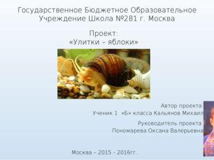 Государственное Бюджетное Образовательное Учреждение Школа №281 г. Москва Про