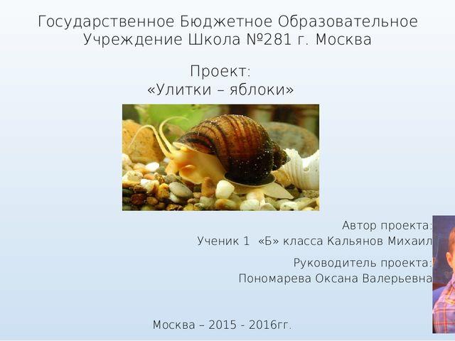 Государственное Бюджетное Образовательное Учреждение Школа №281 г. Москва Про...