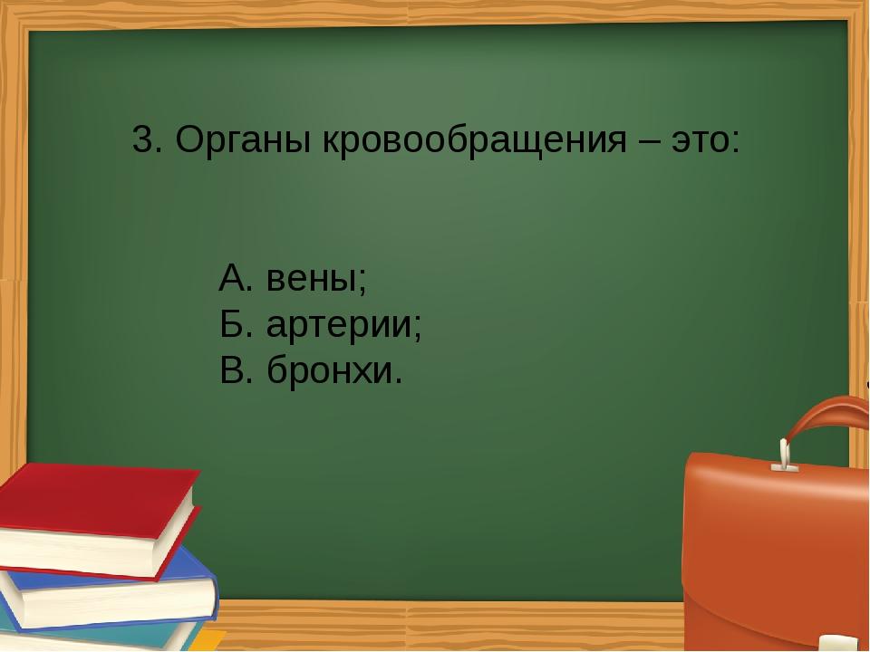 3. Органы кровообращения – это: А. вены; Б. артерии; В. бронхи.
