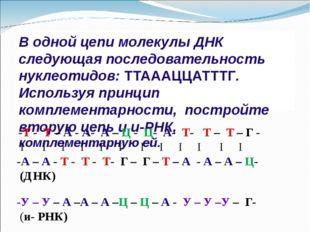 В одной цепи молекулы ДНК следующая последовательность нуклеотидов: ТТАААЦЦАТ