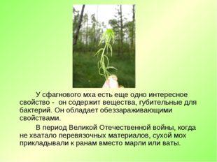 У сфагнового мха есть еще одно интересное свойство - он содержит вещества, г