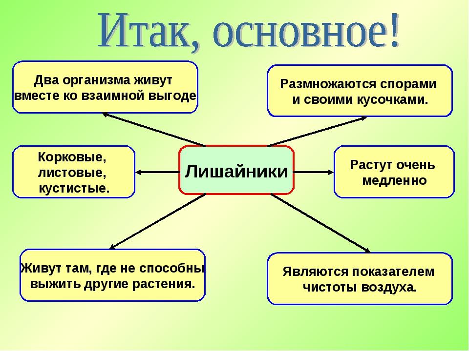 Лишайники Два организма живут вместе ко взаимной выгоде Живут там, где не спо...