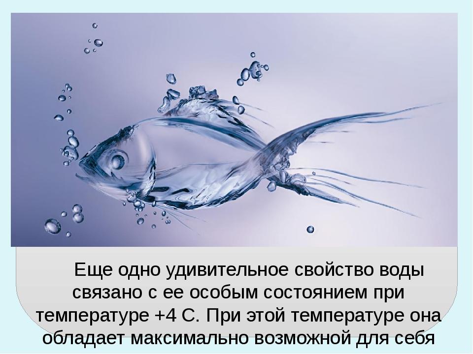 Еще одно удивительное свойство воды связано с ее особым состоянием при темпе...