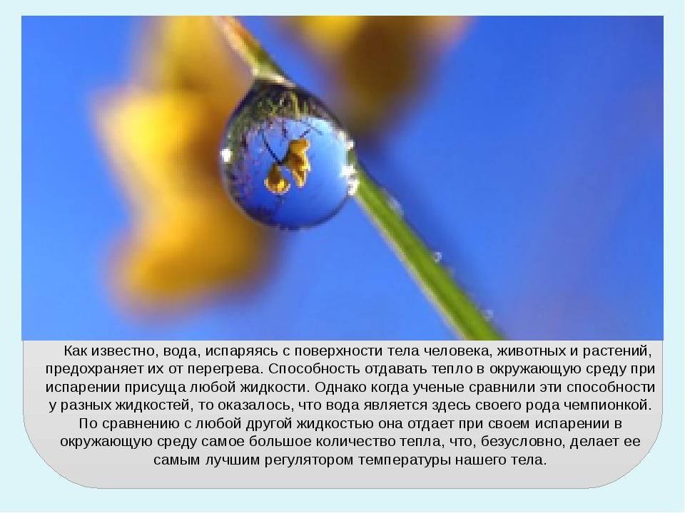 Как известно, вода, испаряясь с поверхности тела человека, животных и растен...