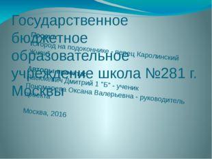 """Проект: """"Огород на подоконнике - перец Каролинский Жнец""""  Авторы проекта:"""