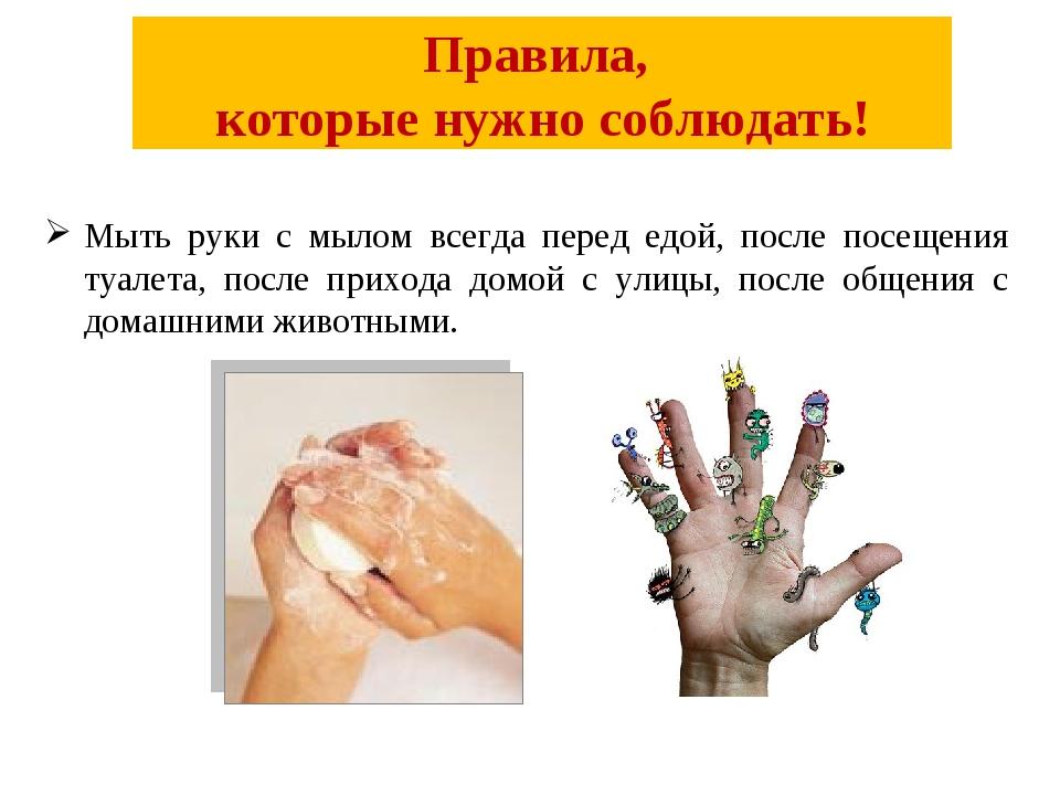 Правила, которые нужно соблюдать! Мыть руки с мылом всегда перед едой, после...