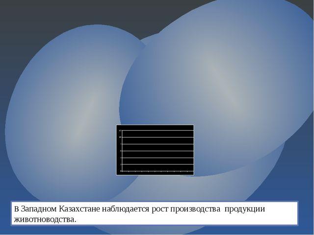 В Западном Казахстане наблюдается рост производства продукции животноводства.