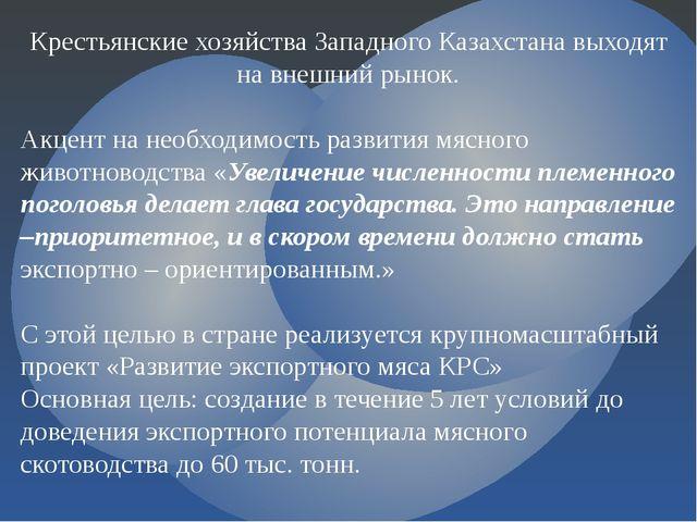 Крестьянские хозяйства Западного Казахстана выходят на внешний рынок. Акцент...