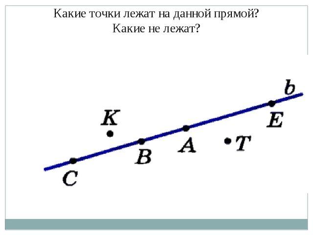 Какие точки лежат на данной прямой? Какие не лежат?