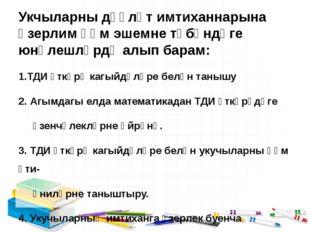 Укчыларны дәүләт имтиханнарына әзерлим һәм эшемне түбәндәге юнәлешләрдә алып