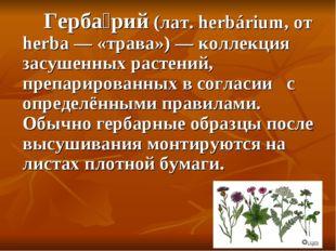 Герба́рий (лат. herbárium, от herba — «трава») — коллекция засушенных растен