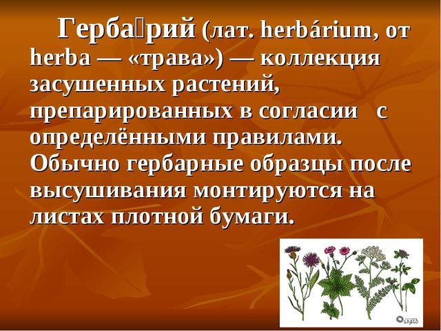 Герба́рий (лат. herbárium, от herba — «трава») — коллекция засушенных растен...