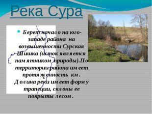 Река Сура Берет начало на юго-западе района на возвышенности Сурская Шишка (и