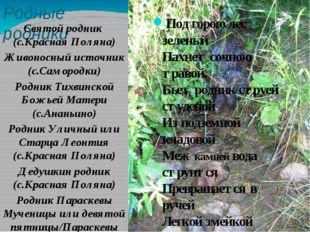 Родные родники Святой родник (с.Красная Поляна) Живоносный источник (с.Саморо