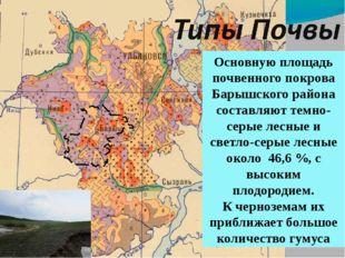 Основную площадь почвенного покрова Барышского района составляют темно-серые