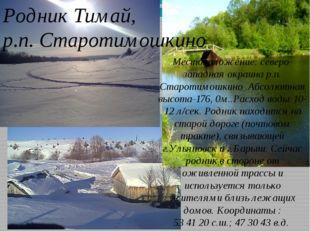 Родник Тимай, р.п. Старотимошкино Местоположение: северо-западная окраина р.